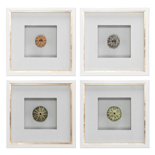 Uttermost Sea Urchins Shadow Box Art, S/4