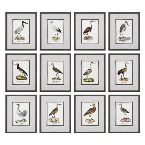 Uttermost Seashore Birds Prints S/12