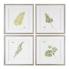 Uttermost Watercolor Leaf Study Prints S/4
