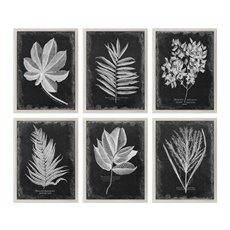 Uttermost Foliage Framed Prints, S/6