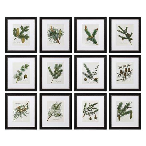 Uttermost Pinecone Prints, S/12