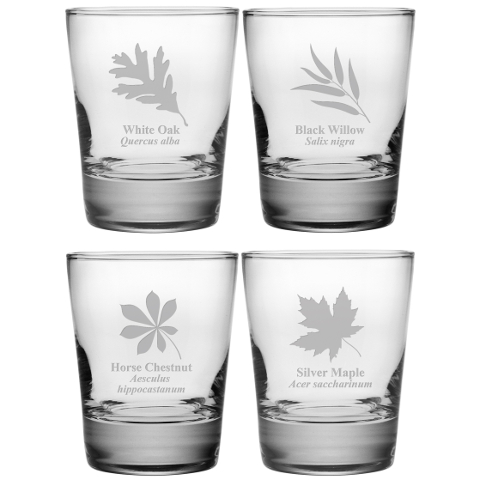 Assorted Leaf Botanicals DOF Glasses (set of 4)