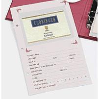 Wine Journal Refill Pack