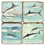 Saltwater Fish Marble Coasters