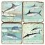 Saltwater Fish Marble Coasters