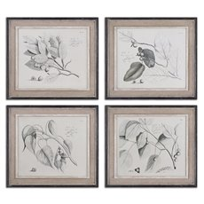 Uttermost Sepia Leaf Study Wall Art, Set/4
