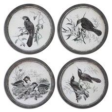 Uttermost Birds In Nature Framed Art, S/4