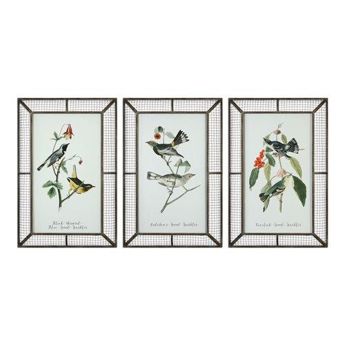 Uttermost Warblers Bird Prints S/3