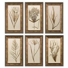 Uttermost Wheat Grass Framed Art Set/6