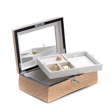 Lacquered Salmon Burl Wood Jewelry Box with Removable Top Tray and  Slots for Rings and Necklace with Soft Velour Lining, Mirror and Locking Clasp