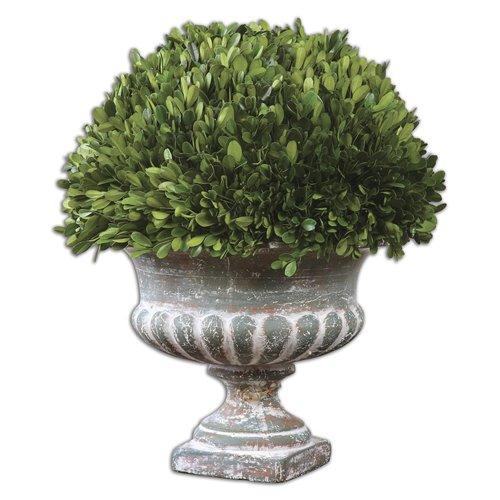 Uttermost Preserved Boxwood Garden Urn