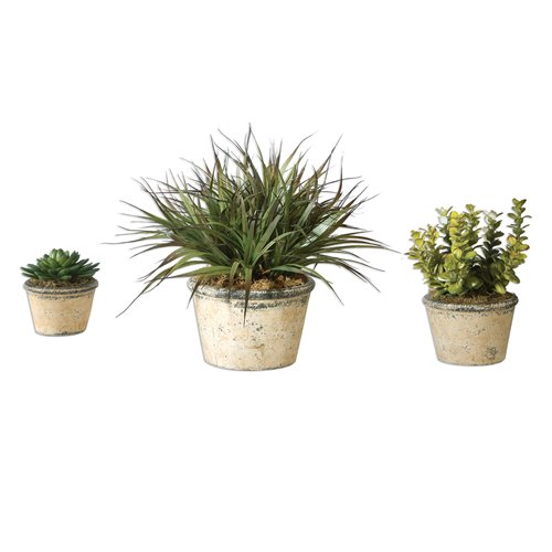 Uttermost La Costa Greenery, Set/3
