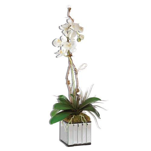 Uttermost White Kaleama Orchids