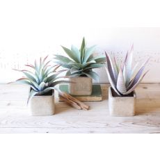 Large Artificial Succulents In Square Pots Set of 3
