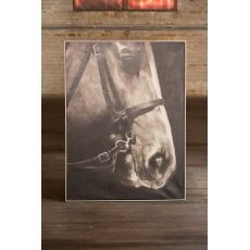 Oil Painting Black and White Side Viewith Horse with Silver Frame