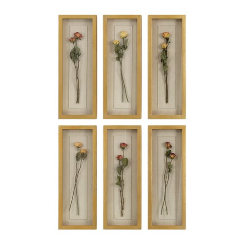 Uttermost Rosalie Long Stem Shadow Box S/6