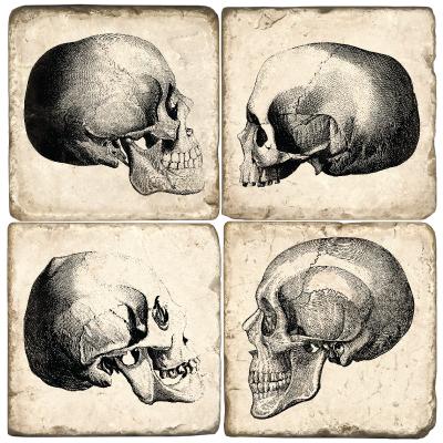 Skulls Italian Marble Coasters