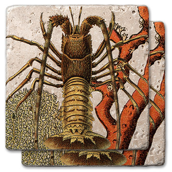 Marine Lobster Stone Coasters
