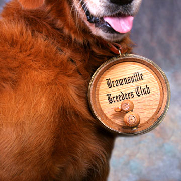 Saint Bernard Oak Barrel and Leather Dog Collar