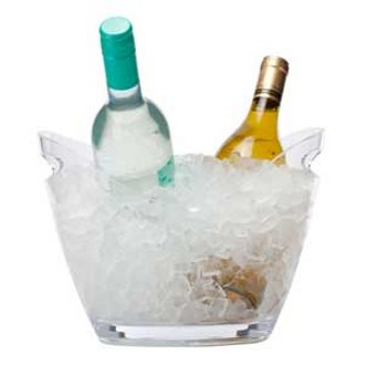 Plastic Party Bucket, 2 Bottle