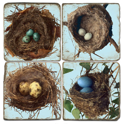 Bird Nests Marble Coasters