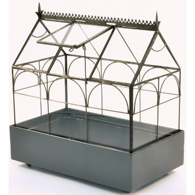 H. Potter Green Accent Wardian Case Tabletop Terrarium